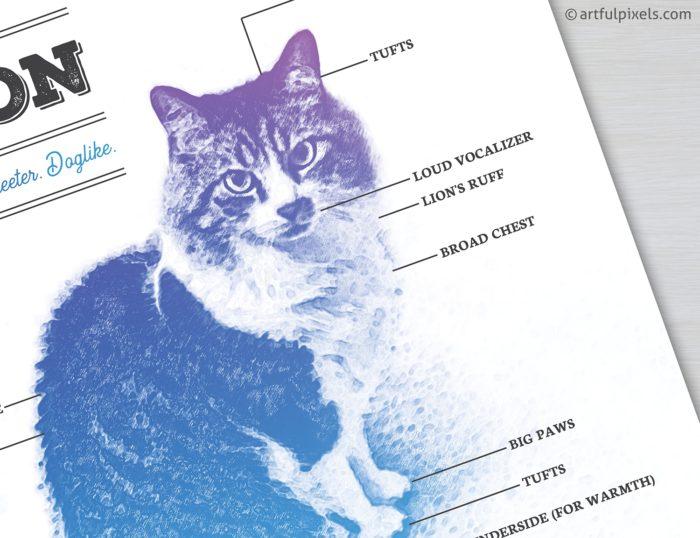 Maine Coon Cat Diagram Art Print