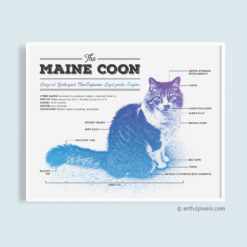 Maine Coon Art Print - Funny Diagram Design