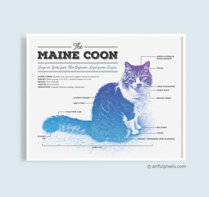 Maine Coon Art Print - Funny Diagram Design