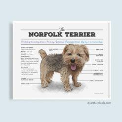 Norfolk Terrier Dog Diagram Art Print