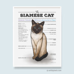 Siamese Cat Diagram Art Print
