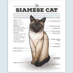 Siamese Cat Watercolor Artwork with Diagram Chart