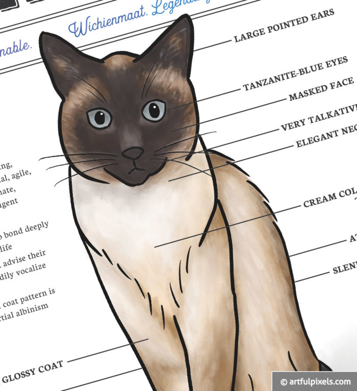Siamese Cat Watercolor Art Print closeup