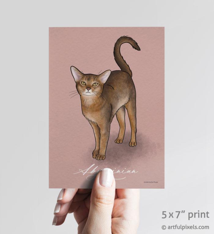 Abyssinian Cat Art Print 5x7