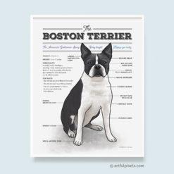 Boston Terrier Wall Art with fun diagram chart