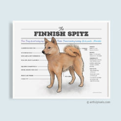 Finnish Spitz diagram chart art poster