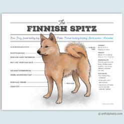 Finnish Spitz art print