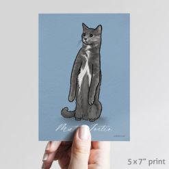 Muted Tortoiseshell cat art print 5x7