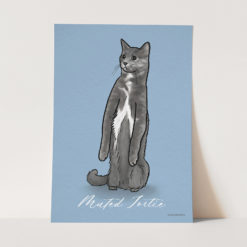 Muted Tortoiseshell cat art print blue background