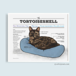 Tortoiseshell cat art print diagram chart