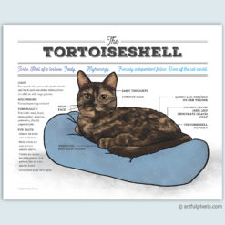 Tortoiseshell cat chart wall art