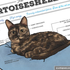 Tortoiseshell cat art print close up