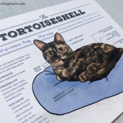 Tortie cat infographic print