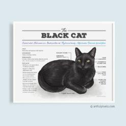 Black Cat Chart Poster