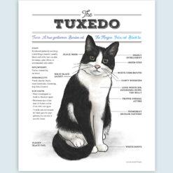Tuxedo cat infographic art print