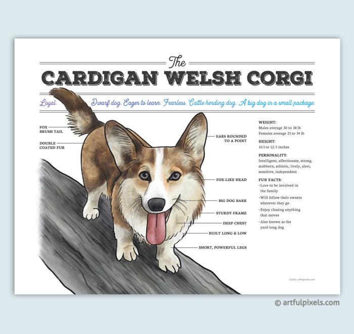 Cardigan Welsh Corgi Dog Breed Chart Art Print