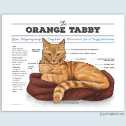 Orange Tabby Ginger Cat Chart Art Print