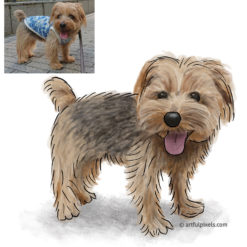 Custom Dog Portrait with original reference photo