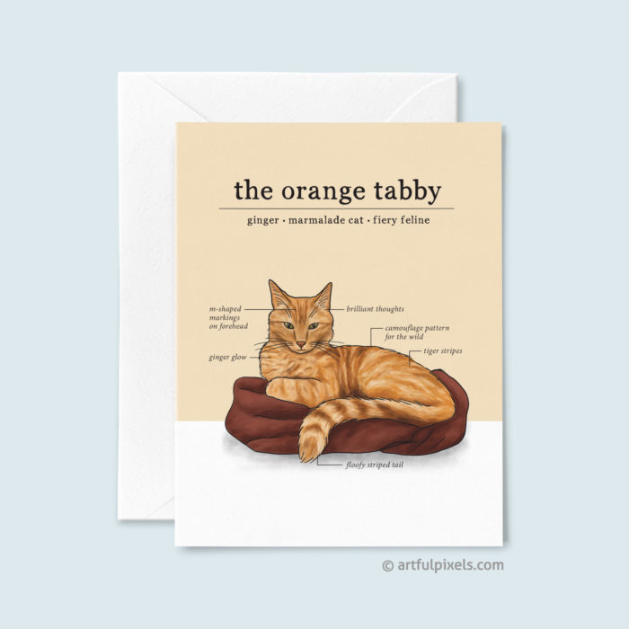 Just Because greeting card featuring an infographic drawing of the orange tabby cat